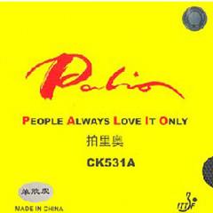 Palio Belag CK 531 A